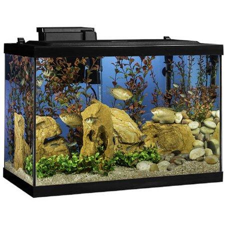 tetra 20 gallon led aquarium starter kit w filter heater plants