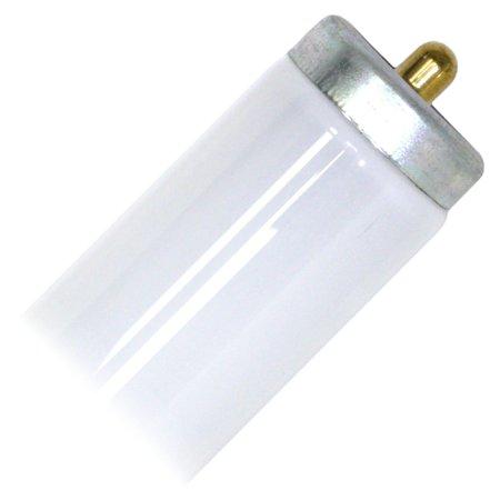 - Philips 363218 - F48T12/CW ALTO Straight T12 Fluorescent Tube Light Bulb