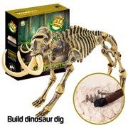 Fossil Dig Kits