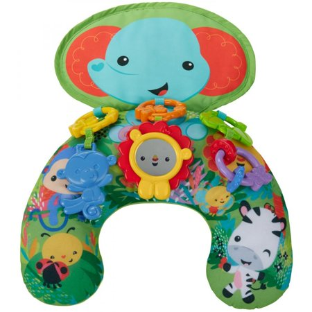 Fisher Price Tummy Time (Fisher-Price Playtime Tummy Wedge )