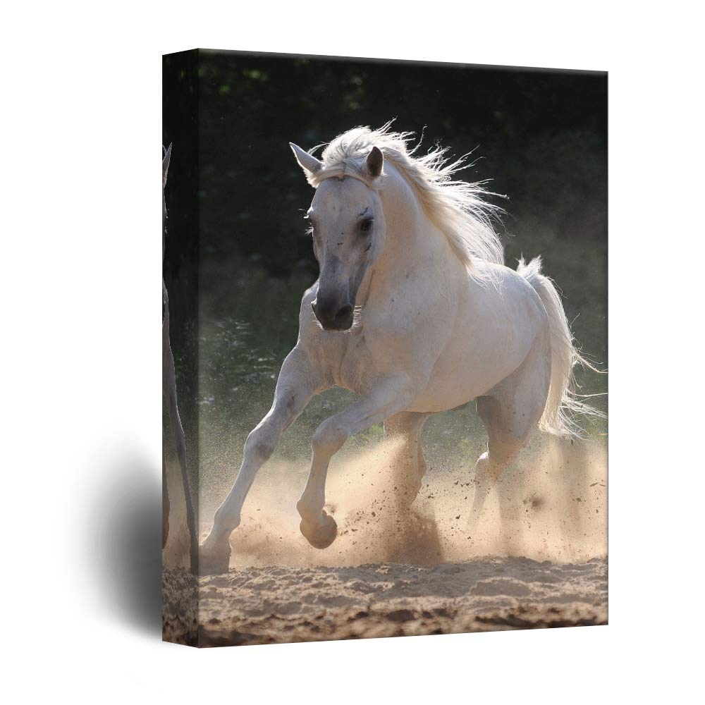 Wall26   Canvas Wall Art   Galloping White Horse   Giclee Print Gallery  Wrap Modern Home