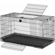 Small Rodent Cages