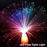 Fiber Optic Lights