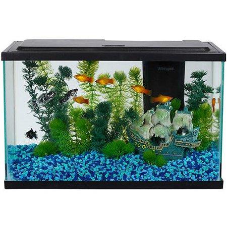 aqua culture 5 gallon aquarium starter kit with led lighting