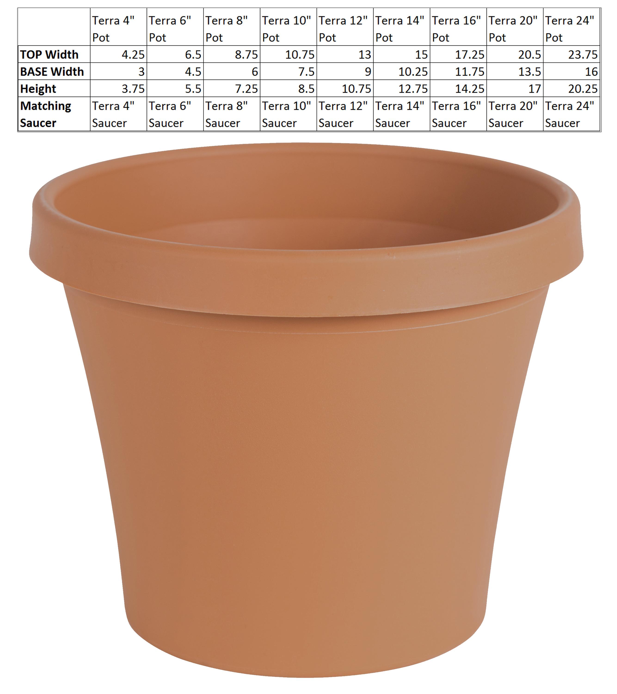 180 & Terracotta Flower Pots