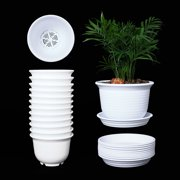 d6fc8de2f 10 Pack 6 Inch Plastic Round Drainage Plant Pots Containers with Saucers  Trays for Indoor and