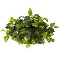 Nearly Natural Artificial Pothos Ledge Plant Silk Plant on Foam