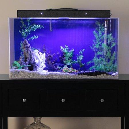 Clear For Life 90R Rectangle Acrylic Aquarium - Black Back