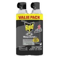 Raid Wasp & Hornet Killer 33, 14 oz (2 ct)