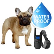 eXuby Small Dog Waterproof Shock Collar & Remote - Includes 2 Collars (Small & Medium
