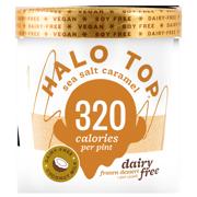 Halo Top Dairy Free Frozen Dessert Sea Salt Caramel, 1.0 PT