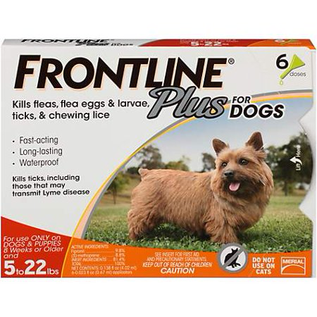 FRONTLINE Plus for Small Dogs (5-22 lbs) Flea and Tick Treatment, 6 Doses