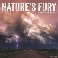 Willow Creek Press 2019 Nature's Fury Wall Calendar