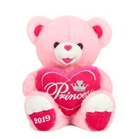 "Way To Celebrate 20"" Sweetheart Teddy 2019- Pink"