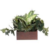 Green Ivy Mixed Pot