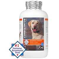 Nutramax Cosequin Maximum Strength (DS) Plus MSM Chewable Tablets Joint Health Supplement for Dogs, 250 Chewable Tablets