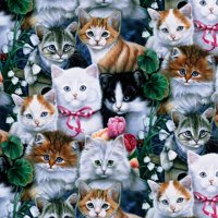 "Valentines Kittens Anti-Pill Polyester Fleece By The Yard, 60"" Wide"