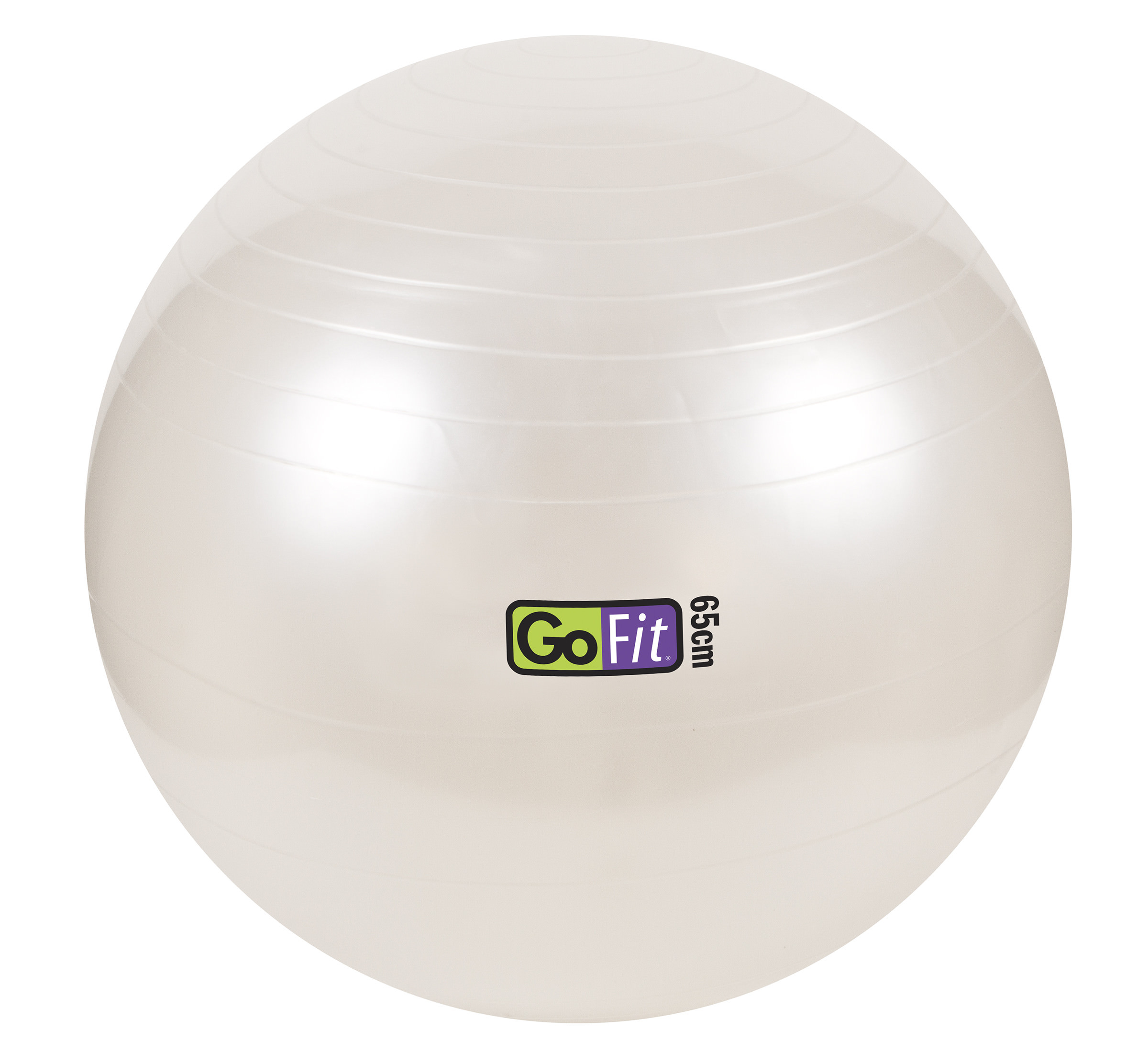 top rated products in exercise \u0026 fitness accessories65cm 1000lb capacity exercise ball with pump \u0026 training poster white