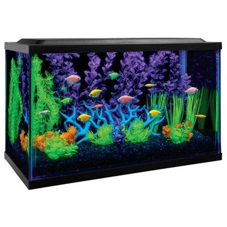 GloFish 10-Gallon Aquarium Kit With Filter, Conditioner ... 10 Gallon Home Aquariums