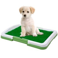 """Puppy Potty Trainer - The Indoor Restroom for Pets 19"""" x 13"""""""