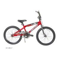 "20"" NEXT Boys' Wipeout Bike"