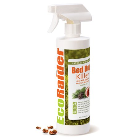 Bed Bug Killer 16OZ by EcoRaider, Green & Non-Toxic, 100% Kill & Extended Protection