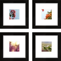 Craig Frames 8x8 Black Picture Frame, Smartphone Collection, Single White Mat with 4x4 Square Opening, Set of 4