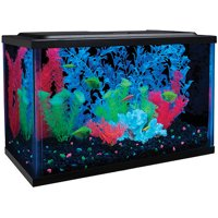 GloFish 5-Gallon Aquarium Kit with LED and Tetra Whisper Filter