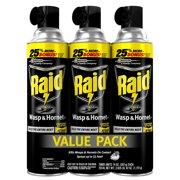 Raid Wasp & Hornet Killer (14 Ounces, 3 count)