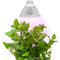 Sandalwood LED Grow Light for Hydroponic Garden and Greenhouse Use - 12W, E27 socket, 3 Bands