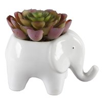 Mainstays Ceramic Elephant Planter Succulent