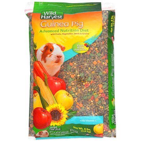 Noisy Guinea Pig - Wild Harvest Advanced Nutrition Diet Guinea Pig Food, 8 lbs.