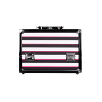 Caboodles Inspired 2 Tray Train Makeup Case