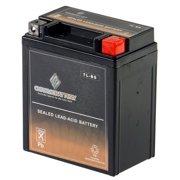 Kawasaki 250cc Batteries