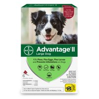 Advantage II Flea Treatment for Large Dogs, 6 Monthly Treatments