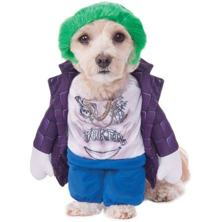 Suicide Squad The Joker Pet Halloween Costume](The Joker Costume Kids)