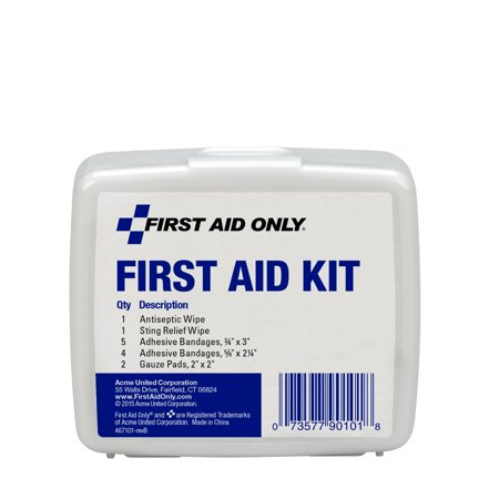 First Aid Only Personal First Aid Kit, Plastic Case, 13 (First Aid Personal Protection Equipment)