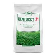 Expert Gardener Kentucky 31 Tall Fescue Grass Seed; 20 Pounds