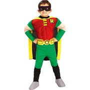 2ad53ec69c3 Batman Robin Deluxe Child Halloween Costume