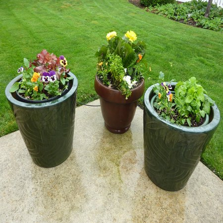 LAMINATED POSTER Patio Potted Pots Containers Plant Flowers Garden Poster Print 24 x (Pod Flowers)