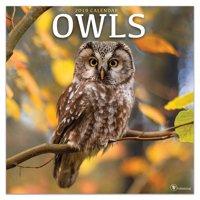 """2019 Owls 12"""" x 12"""" January 2019-December 2019 Wall Calendar"""