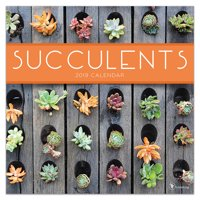 "2019 Succulents 12"" x 12"" January 2019-December 2019 Wall Calendar"