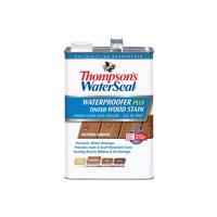 Thompson's WaterSeal Waterproofer Plus Tinted Wood Stain, Nutmeg Brown, 1-Gal