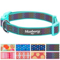 "Blueberry Pet Magic Rainbow Color Reflective Polka Dot Holo Dog Collar in Mint Blue, Large, Neck 18""-26"""