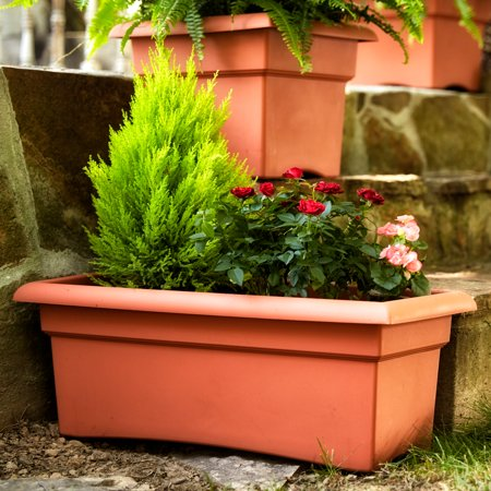 Urn Weathered Terra Cotta (Bloem Veranda Window Deck Box Planter 26 x 11 Terra Cotta )