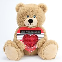 Valentine's day gift jumbo candy bear