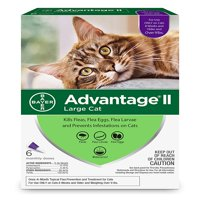 Advantage II Flea Treatment for Large Cats