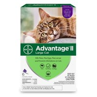 Advantage II Flea Treatment for Large Cats, 6 Monthly Treatments
