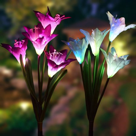 - 2 Pack Outdoor Solar Garden Stake Lights - Coolmade Solar Powered Lights with 8 Lily Flower, Multi-color Changing LED Solar Stake Lights for Garden, Patio, Backyard (Purple and White)