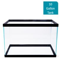 Aqua Culture 10-Gallon Glass Aquarium